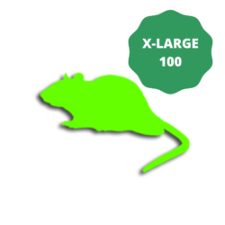 Extra Large frozen rats for snakes-350g- Pack of 100
